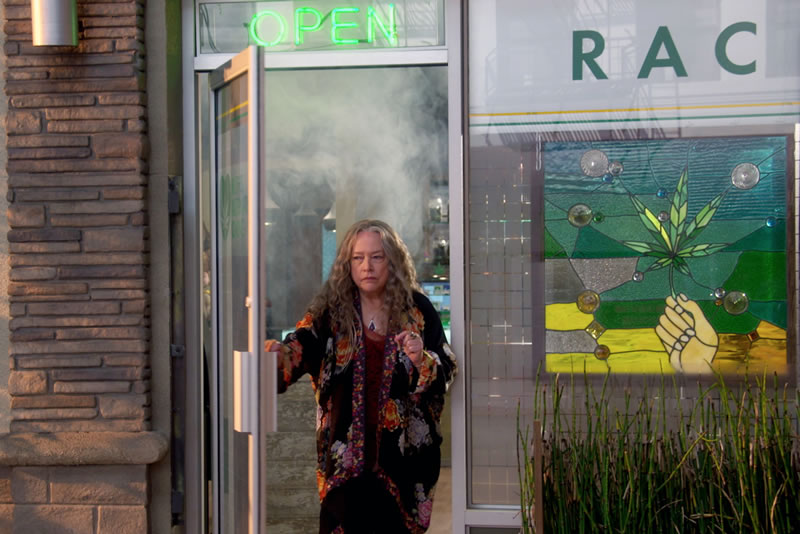 22 Estrenos en Netflix durante Agosto 2017 que tienes que ver - estrenos-netflix-agosto-2017-disjointed