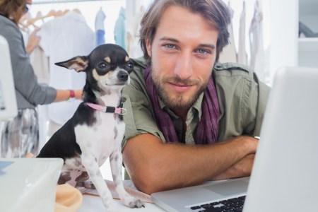 ¿Cómo disfrutar de tu perro en la oficina sin desatender el trabajo?