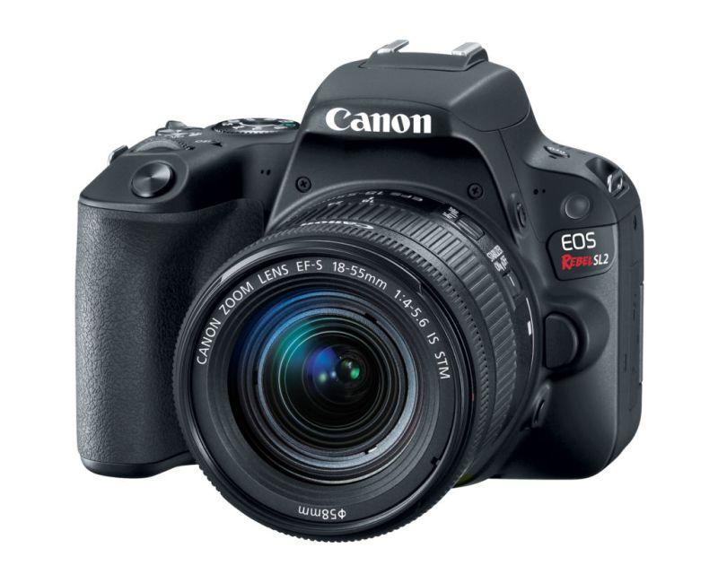eos rebel sl2 canon 5 800x640 Nueva Canon EOS Rebel SL2: ideal si quieres iniciar en el mundo de la fotografía