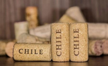 Los mejores vinos chilenos en 2017 elegidos en el AWoCA