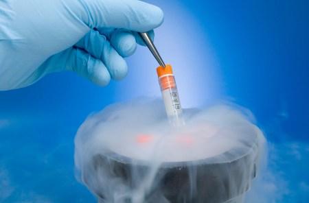 Innovan científicos de la UNAM aislamiento de células madre
