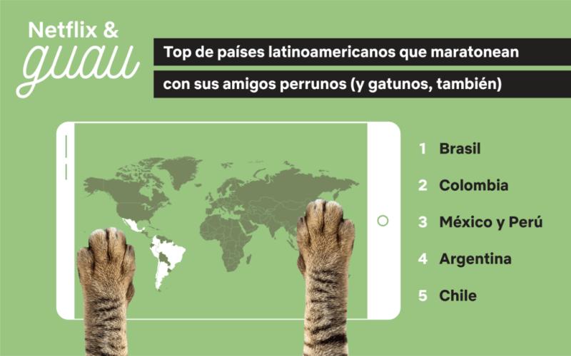 NETFLIX & GUAU: Maratonear es mejor con perros (y gatos) - netflix-guau_1-800x500