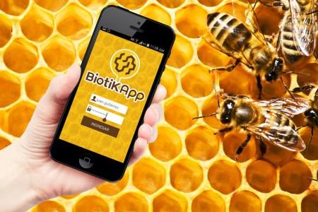 Crean método tecnológico para aumentar la exportación de miel