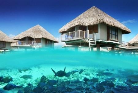Los mejores destinos para nadar con tiburones este verano - le-meridien-bora-bora