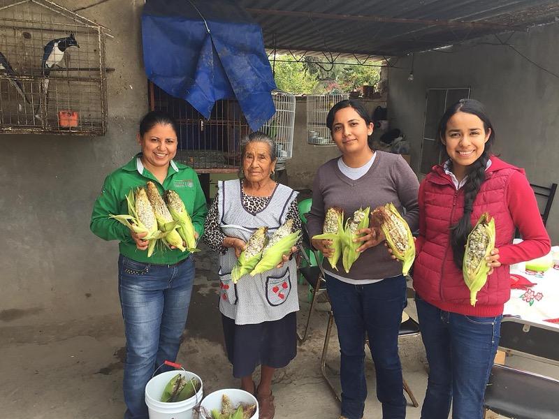 Incrementan científicos mexicanos producción de huitlacoche - mujeres-emprendedoras-de-mexquitic-de-carmona-800x600