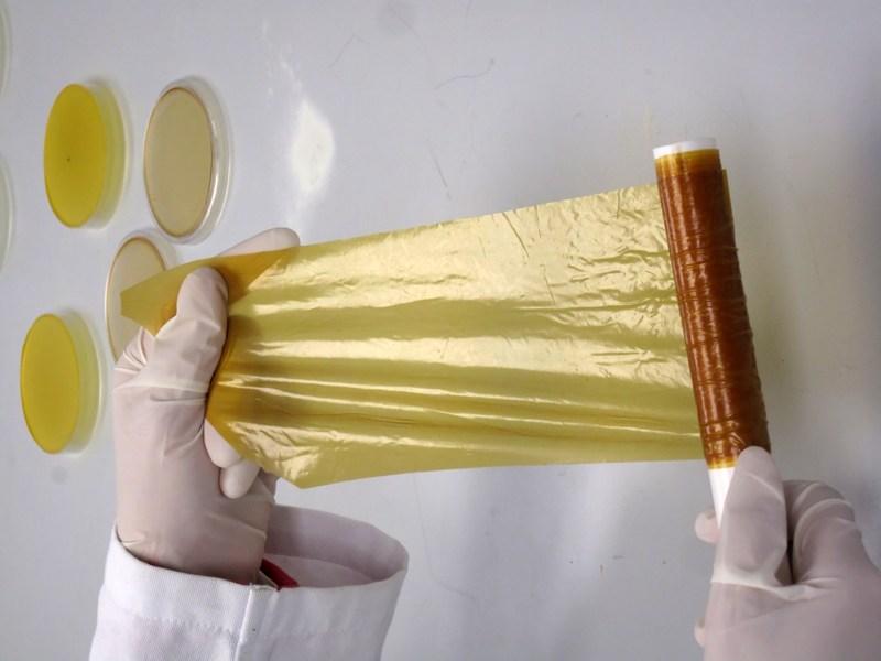 Alumnas de la UNAM crean plástico biodegradable con residuos de mango - bioplastico-de-cascara-de-mango1
