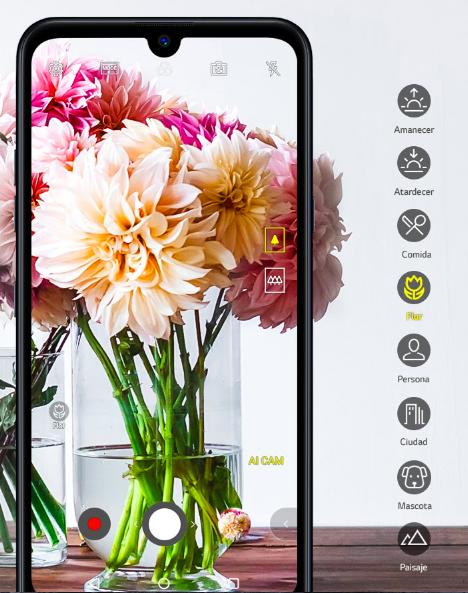 LG Q60 con triple cámara con Inteligencia Artificial ¡conoce sus características y precio! - smartphone-lg-q60-camara-con-inteligencia-artificial