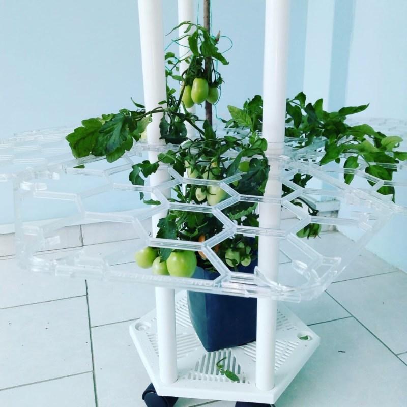 Honeycomber, dispositivo de entrenamiento de planta - honeycomber_1