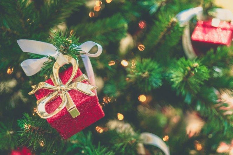 Frases y mensajes de navidad 2019 para WhatsApp, SMS, Facebook... - frases-navidad-2019-whatsapp-sms-facebook-webadictos