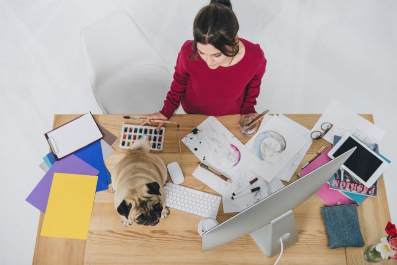 Cómo asegurar tu productividad durante esta temporada de home office - productividad-800x534