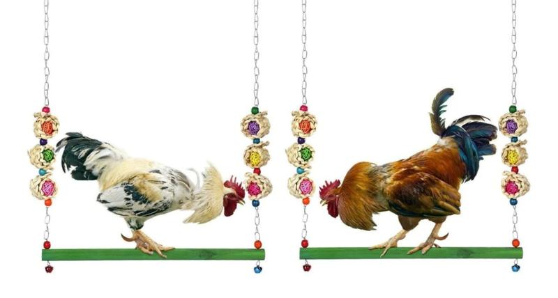 Productos raros que se venden en Mercado Libre - columpio-para-gallinas-800x428