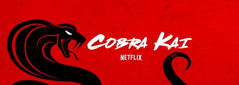 Temporada 3 de Cobra Kai: Fecha de estreno y anunció de la cuarta entrega - cobra-kai-800x285
