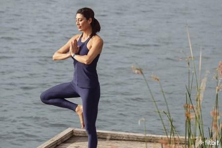 Fitbit: medir y controlar el estrés con indicadores físicos