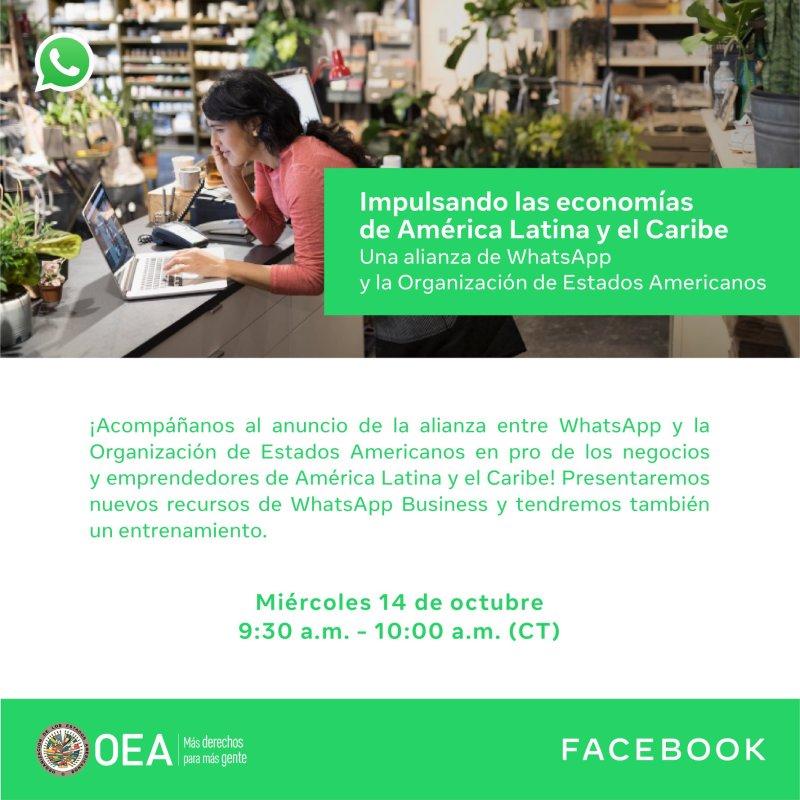 WhatsApp y la OEA unen fuerzas en soluciones de marketing digital para pequeñas empresas - whatsapp-organizacion-estados-americanos