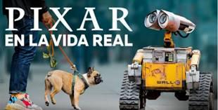 Disney Plus: Estos son los estrenos de diciembre 2020 - pixar-en-la-vida-real