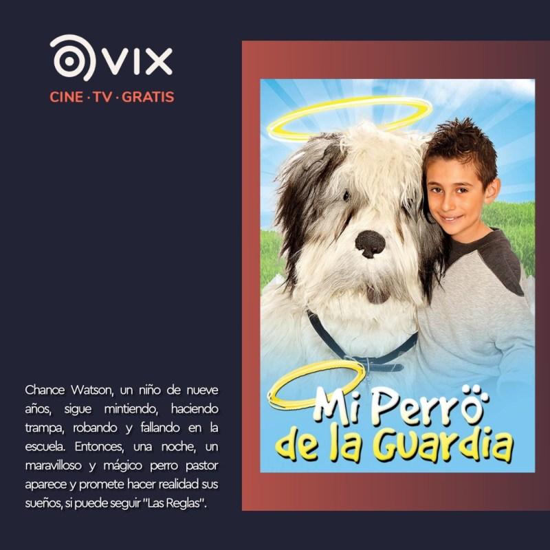 Maratón de lomitos en vix – cine y tv gratis - 3-mi-perro-de-la-guardia-vix-800x800