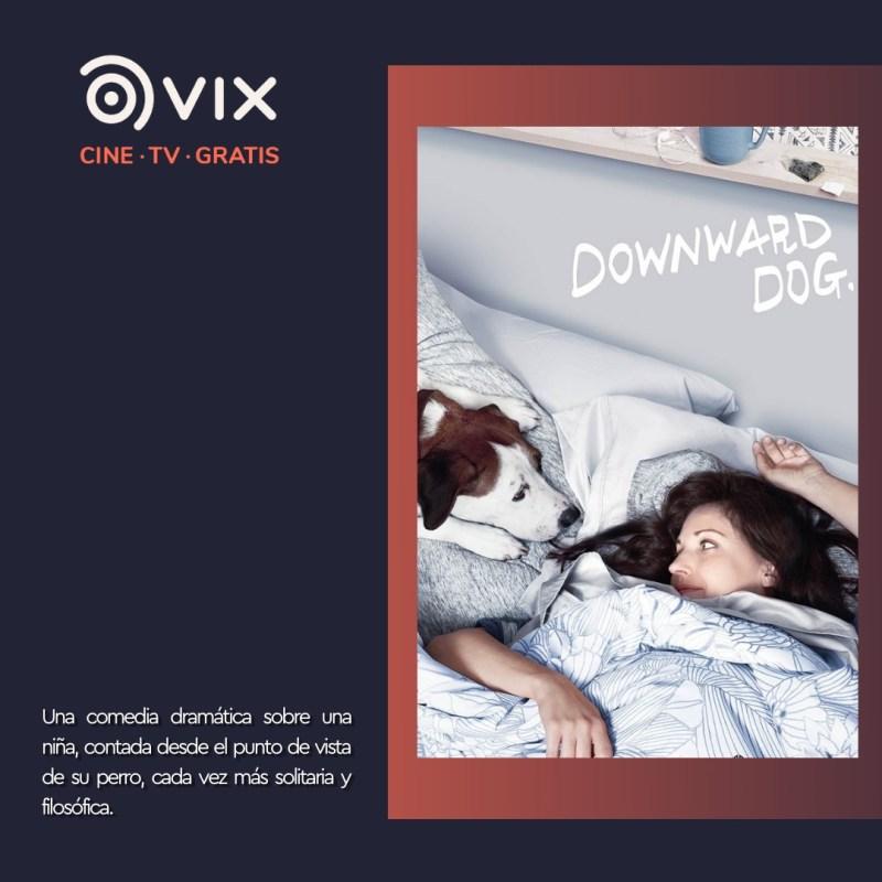 Maratón de lomitos en vix – cine y tv gratis - 4-downward-dog-vix-800x800