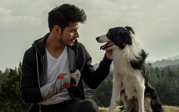 Maratón de lomitos en vix – cine y tv gratis - cometa-el-su-perro-y-su-mundo-vix-1