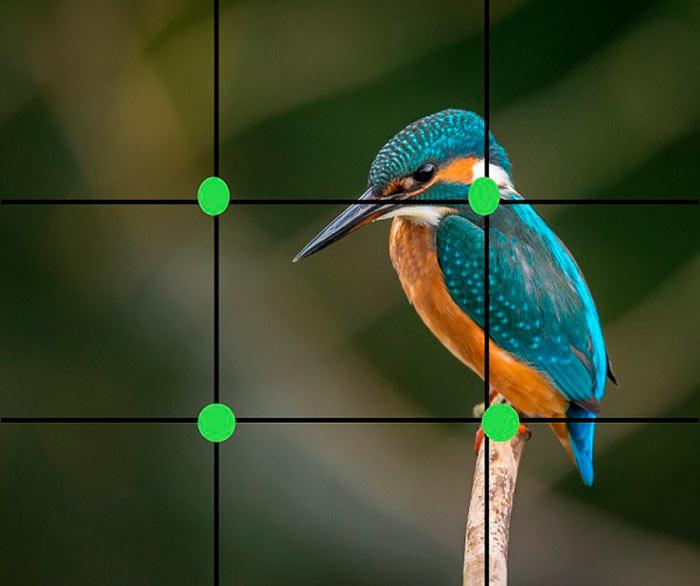 Cómo tomar buenas fotos: el grid de tu celular (regla de tercios) - 2