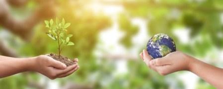 Empresas que impulsan un consumo más consciente a favor del medio ambiente