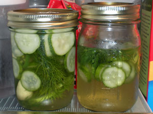 quick pickles with jalapeno, garlic and dill