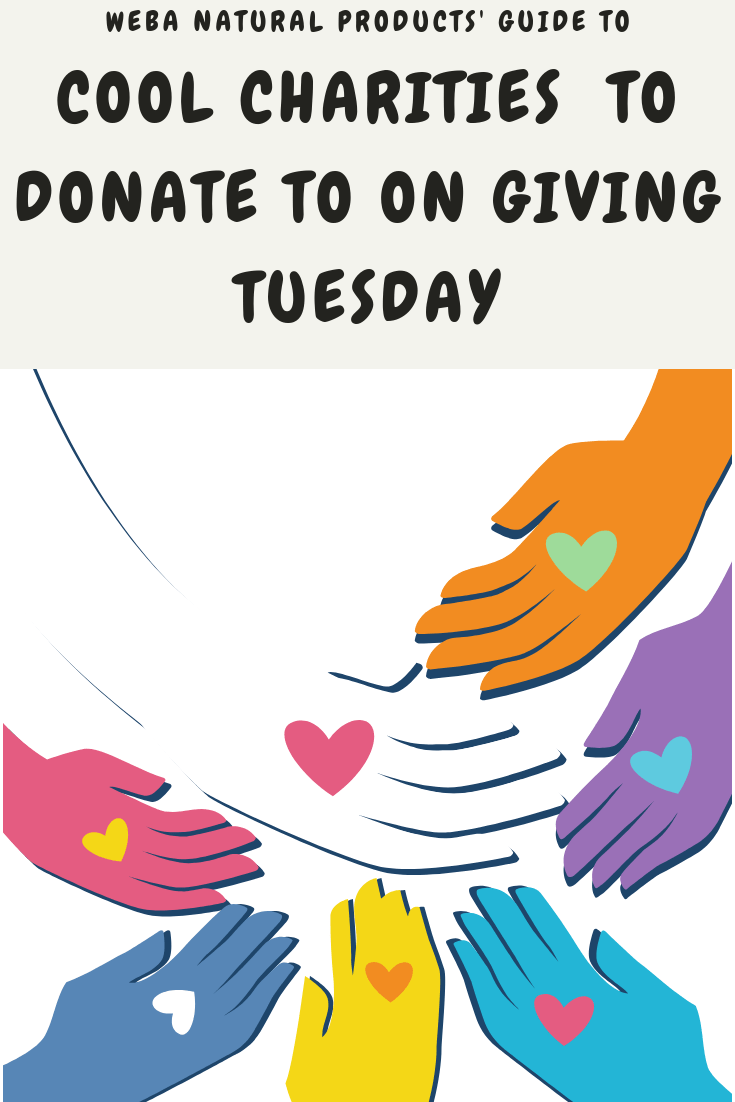 charities to donate to on Giving Tuesday