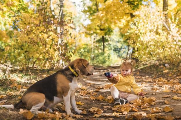 Beagle e uma menina sentados nas folhas