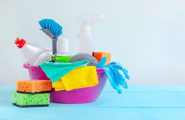 Como limpar o ambiente e objetos do cão corretamente
