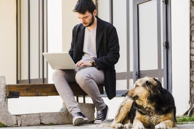 Levar cães para o trabalho diminui o estresse
