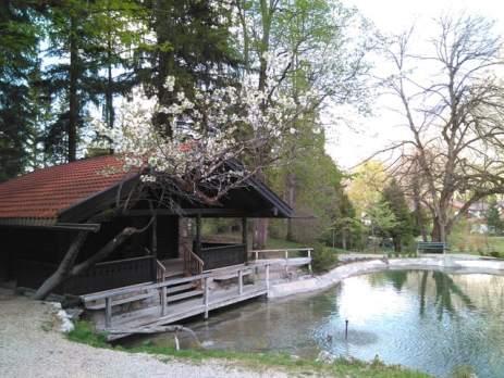 Forellenteich im Krausegarten