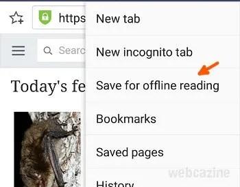zenfone save offline reading