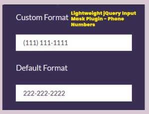 Lightweight-jQuery-Input-Mask-Plugin