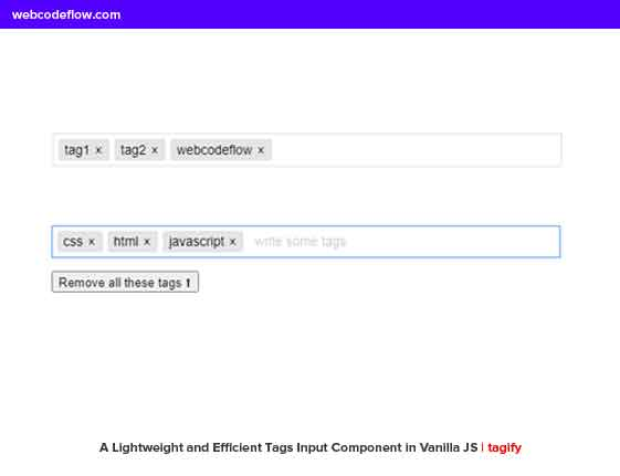 Tags-Input-Component
