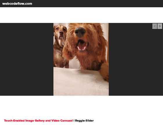 Reggie-Slider