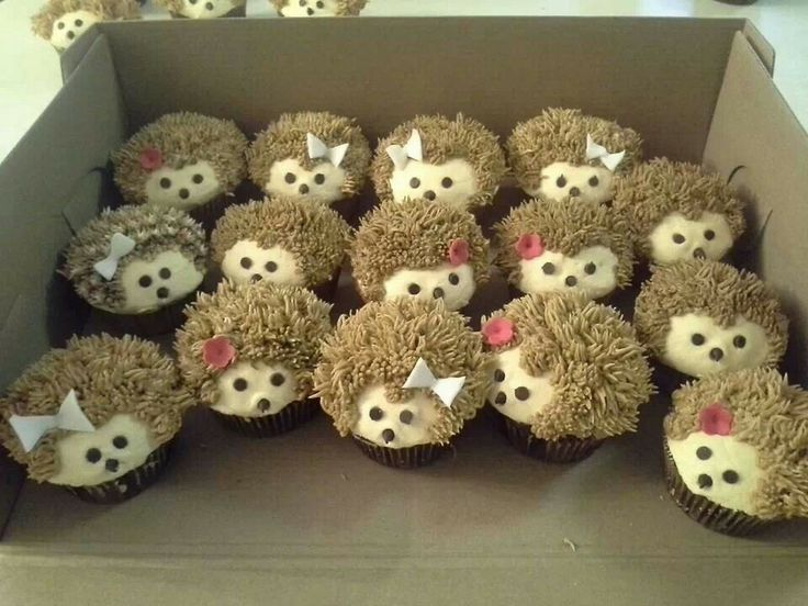 Best Hedgehogs cupcakes