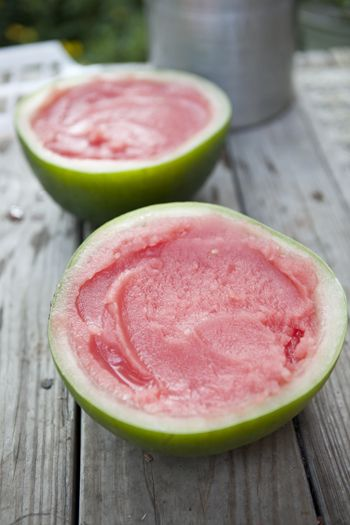 Watermelon sorbet! So easy… I'm so making this when it gets hot!