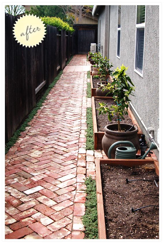 Our new side yard! Herringbone path, container citrus, raised vegetable beds. I'm so happy with how it cam