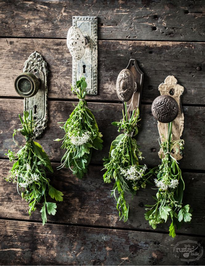 drying herbs: another great way to repurpose old doorknobs | one of 8 picks for this weeks Friday