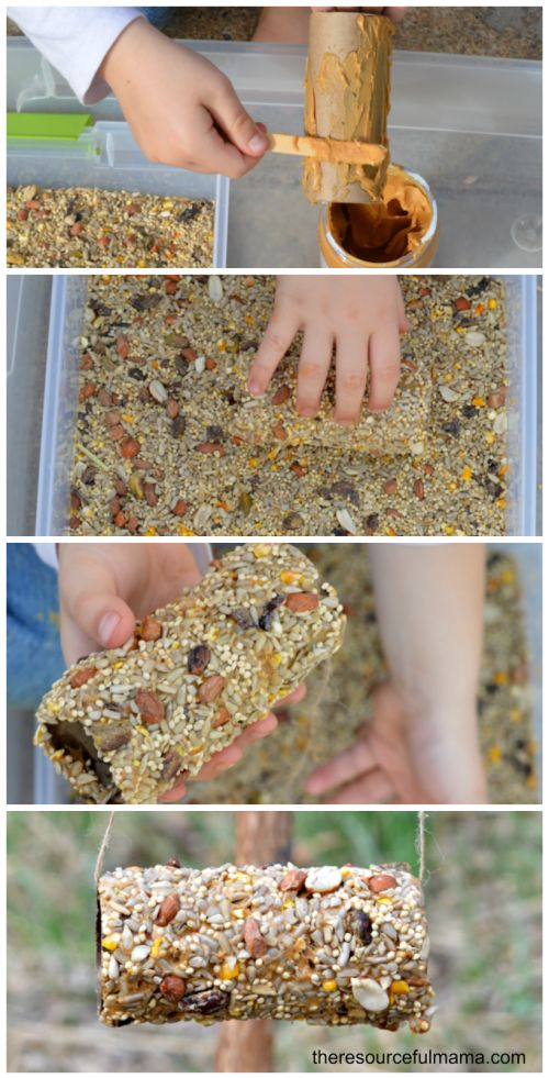 Reuse toilet paper cardboard rolls to make homemade DIY bird feeders. This is a gr