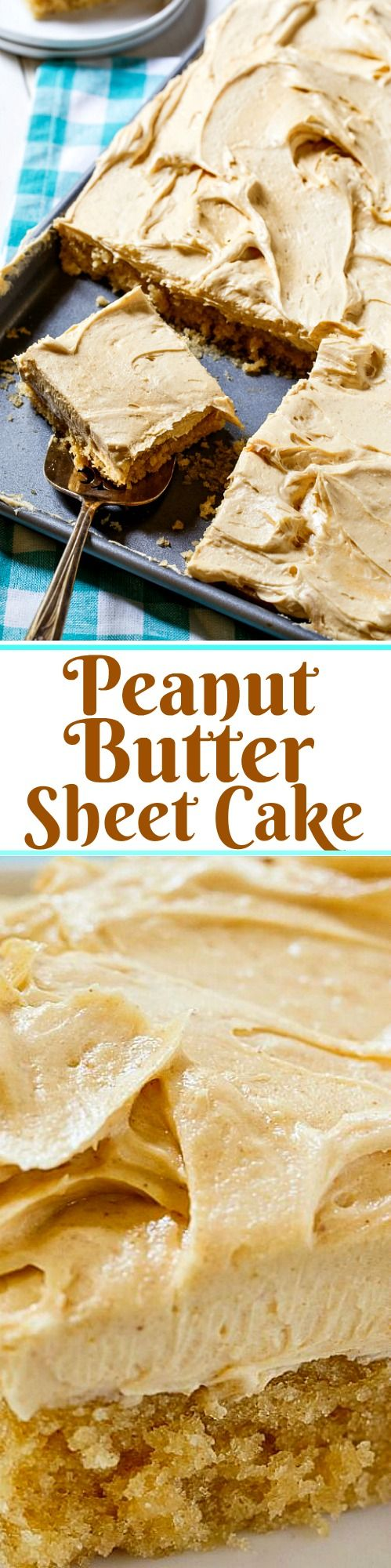 Peanut Butter Sheet Cake with a thick and fluffy peanut butter frosting.