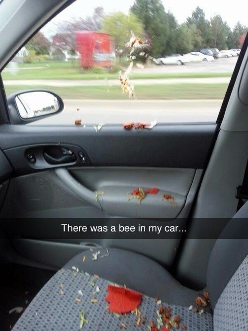 Some of the Most Hilarious Snapchat Fails – You Only Live Once | Guff