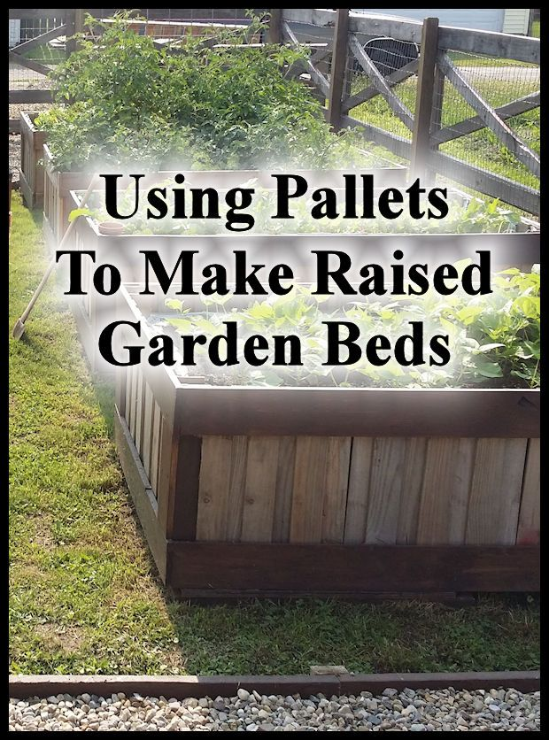Growing a garden in raised beds has many benefits (read more about that here) but can sometimes be a little costly depending on
