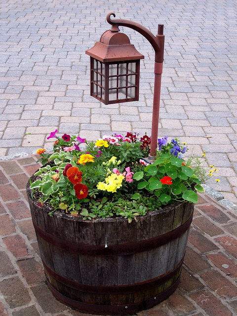Fill a 1/2 wine barrel with flowers and a lantern – great for a patio