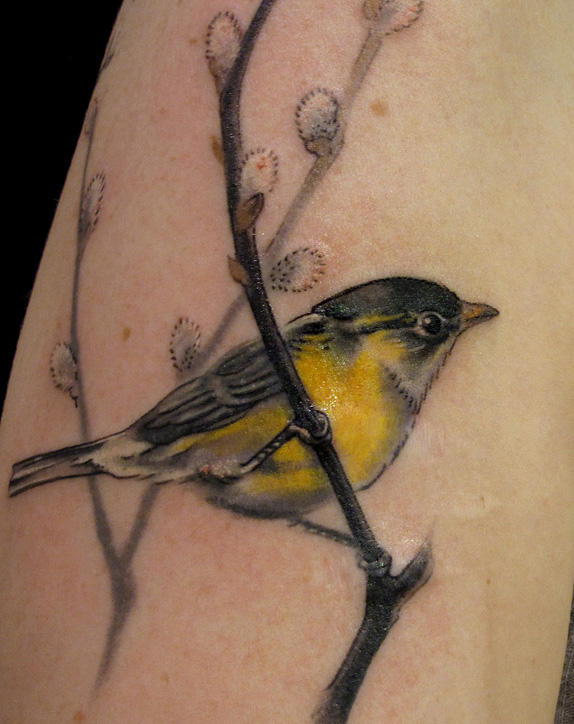 tattoos by Esther Garcia of Butterfat Studios Chicago great inspiration for the redwing blackbird on a cat tail that I would like
