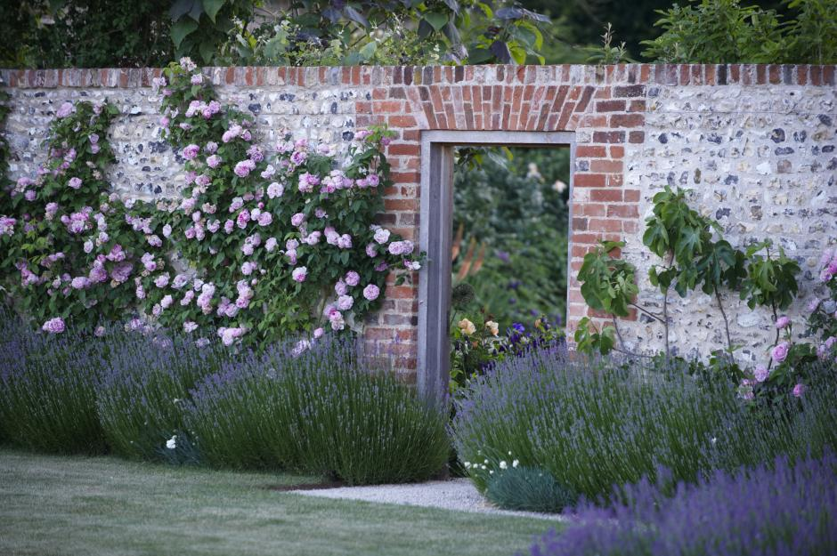 Lavender and roses… glorious combination… :) The scents, combined–utterly enticing. I'm thinking, add jasmine! Lovely entry