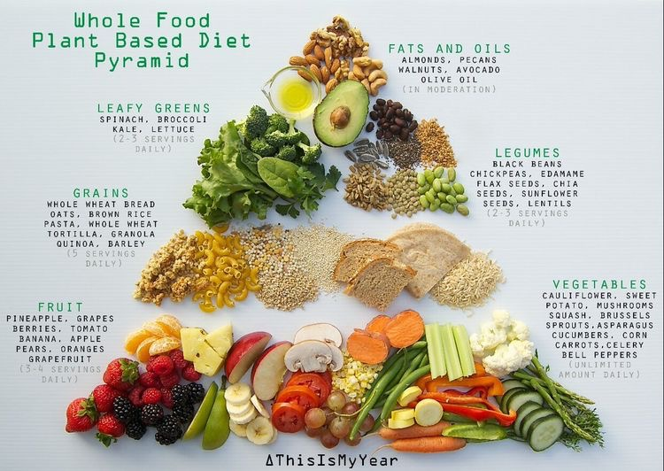Whole food plant based diet