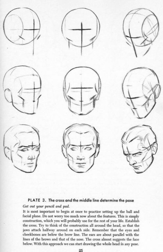 andrew_loomis___drawing_the_head__amp__hands_03_by_vimes_da-d5us7wo