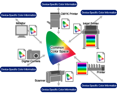Understanding Color Management Systems | EIZO