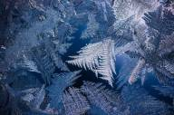 iarna (4)