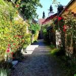 12 colțișoare de rai europene